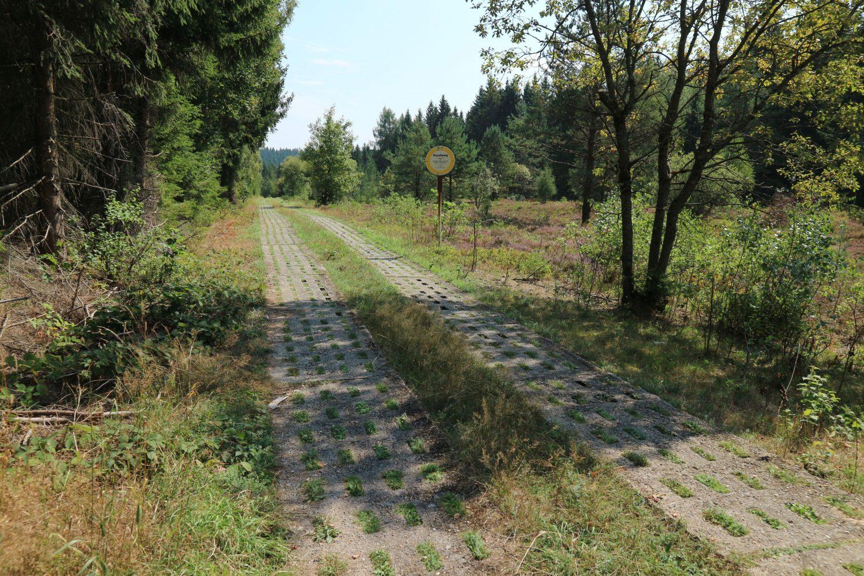 Ein Postenweg der DDR-Grenzer im Thüringer Wald bei Brennersgrün.